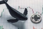 Chainalysis: За неделю «киты» купили 77 000 BTC