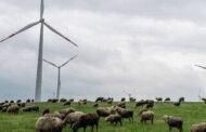 Росатом выпустит «зеленые облигации» на 100 миллиардов рублей