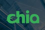 Популярность Chia обеспечила выручку Western Digital